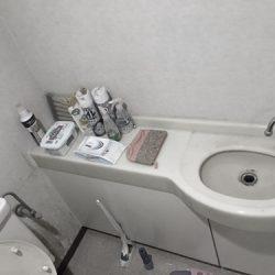 【新百合ヶ丘エリア】川崎市麻生区にあるリフォーム・リノベーション専門店|リフォーム工房アントレのオリジナル家具・手洗い収納のあるトイレリフォーム事例04